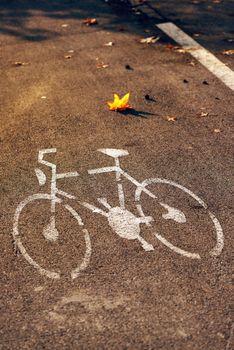 Empty bicycle street lane on autumn morning