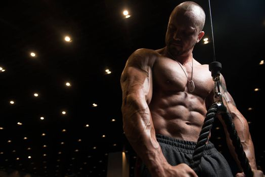 Man Exercising Triceps In The Gym