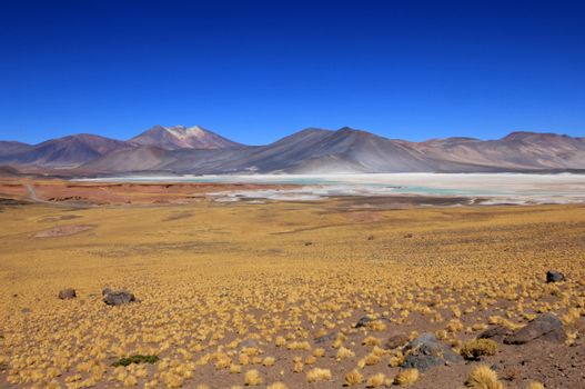 Salar Aguas Calientes, Atacama desert, Chile