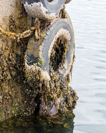 Recycled old tyre used as bumper