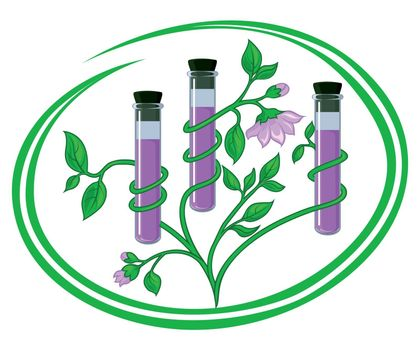 Conceptual illustration representing test tubes with natural components twined about by stems plants