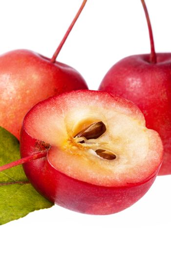 Red paradise apples isolated on white background, close up