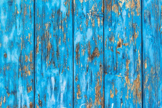 Background of rustic planks with blue paint peel off