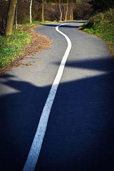 winding path in autumn
