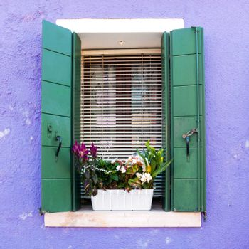 Colorful window with open shutters and flower pot on the Venetian island of Burano