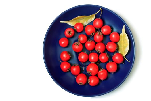 Hawthorn berries on a plate on a white background.