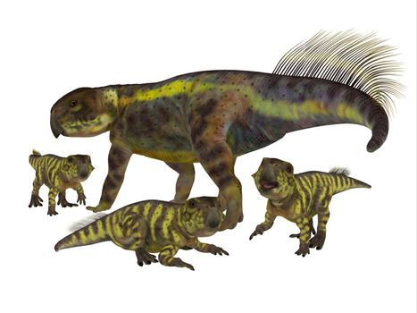 Psittacosaurus Mother with Offspring