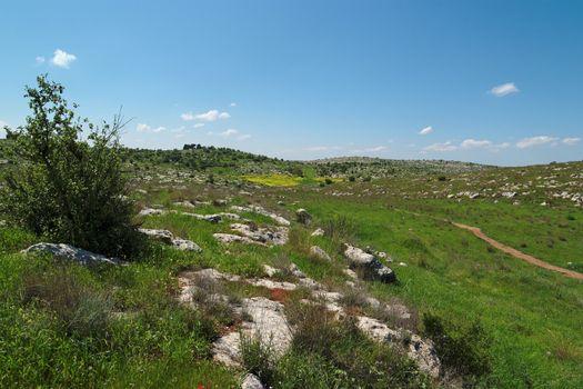 Green Mediterranean valley among hills in spring