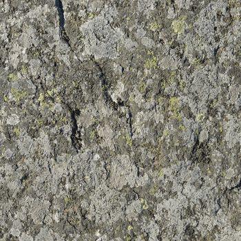 Texture stone mold