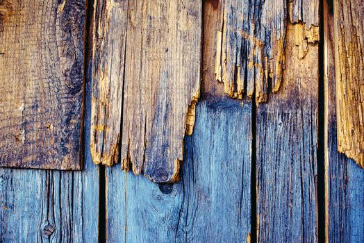 Rough weathered wood texture, obsolete wooden planks