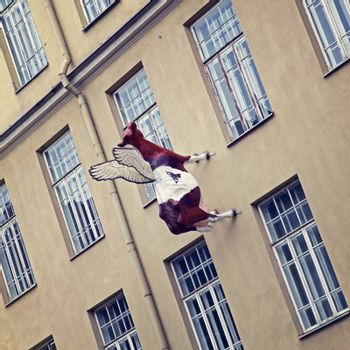 Flying cow sculpture on the building wall in Vilnius, Lithuania