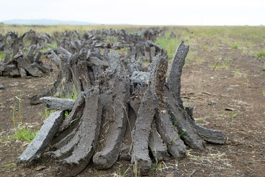 turf stacked up for the bog winds to dry in county kerry on the wild atlantic way of ireland