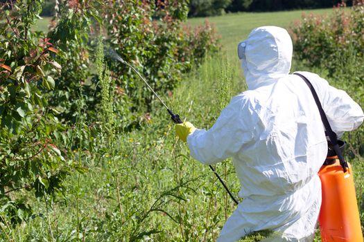 Pesticide spraying. Pest management.