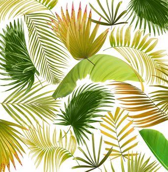 mix palm leaf tree background