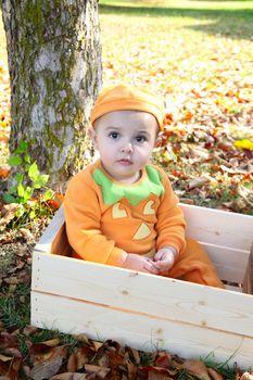 Baby girl dressed in a pumpkin halloween costume