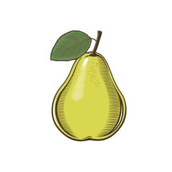 Pear in vintage style