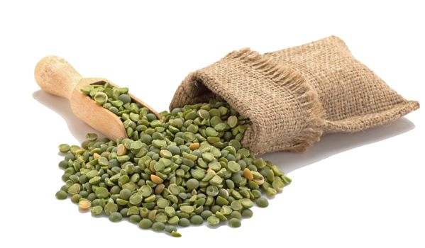Green peas in a burlap with a shovel