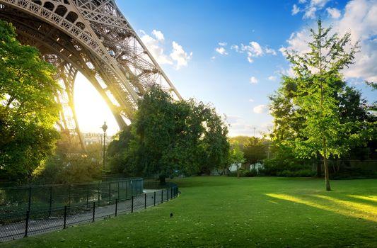 Meadow near Eiffel Tower