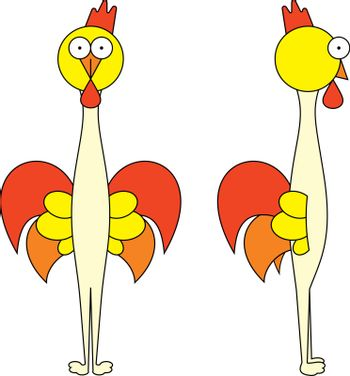 Fire rooster funny cartoon illustration, front view and side view