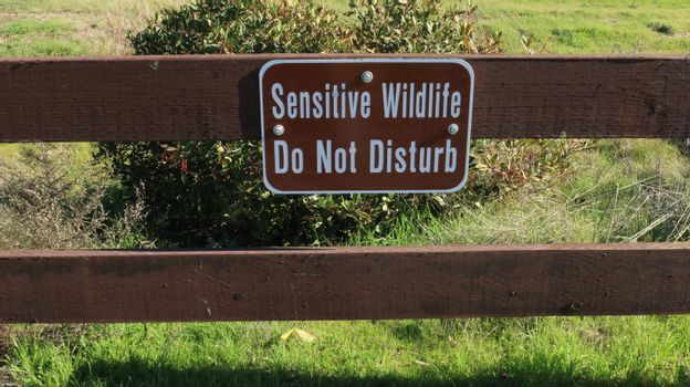 Sign Sensitive wildlife do not disturb