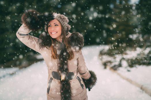 Wintertime Walk