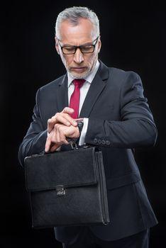 Businessman holding briefcase