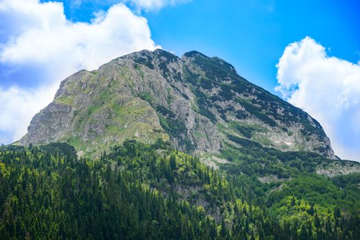 Beautiful Medjed (Bear) Peak with Green Forest. Mountain in the National Park Durmitor, Dinaric Alps, Montenegro