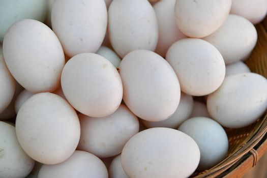 Eggs of duck in basket at market.