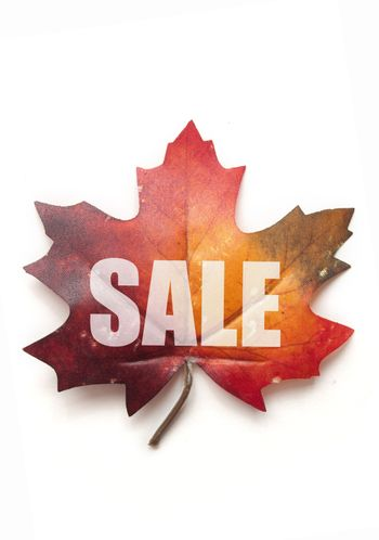 Autumn sale leaf over a white background