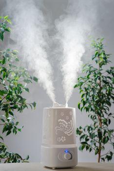 ultrasonic humidifier in the house. Humidification. Vapor