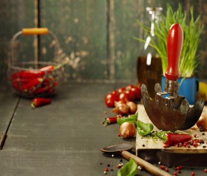 Fresh ingredients and rustic mezzaluna