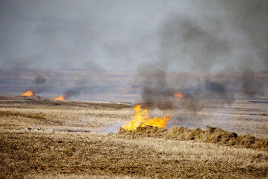 Prairie Stubble Burn