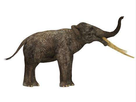 Stegotetrabelodon was an elephant that lived in the Miocene and Pliocene Periods of Africa and Eurasia.