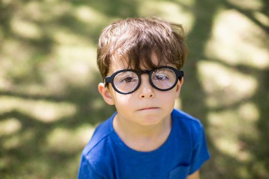 Young boy in spectacles