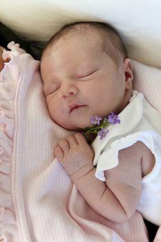 Sleeping newborn baby with flower