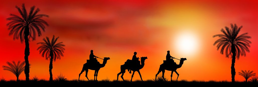 Riders on camels on the background of palm trees and sunset.