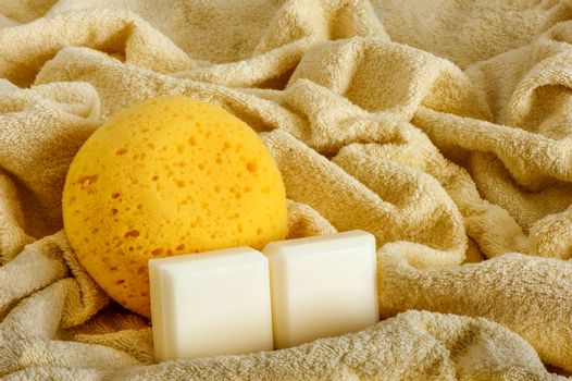 sponge and soap on a  white background