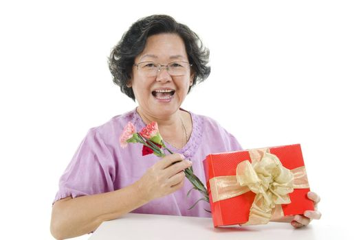 Portrait of happy 60s Asian senior adult woman receiving gift box and carnation flower on mothers day, isolated on white background.