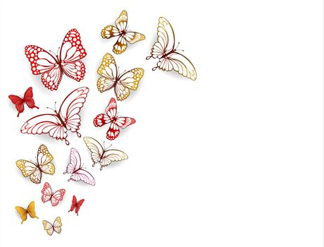 Collection of multi-colored butterflies on a white background.
