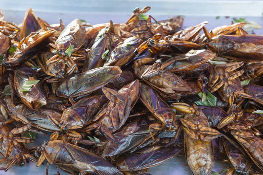The exotic food menu in thailand is fried insect