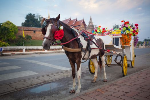 horse carriage in temple Phrathat Lampang Luang in Lampang, Thailand
