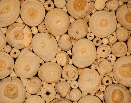 tree wood brown circle stumps as background