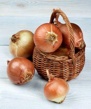 Arrangement of Ripe Raw Golden Onions Full Body in Wicker Basket on Blue Wooden background