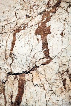 white limestone clay soil