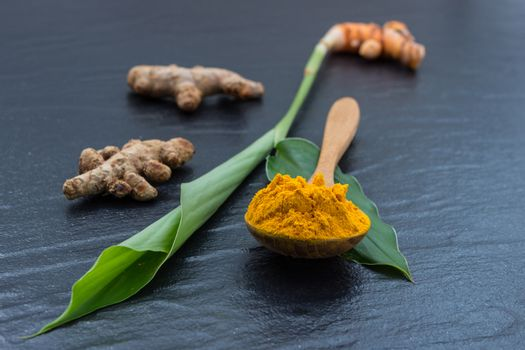 Turmeric and Curcumin, Used in Asia  and is a major part of Sidd