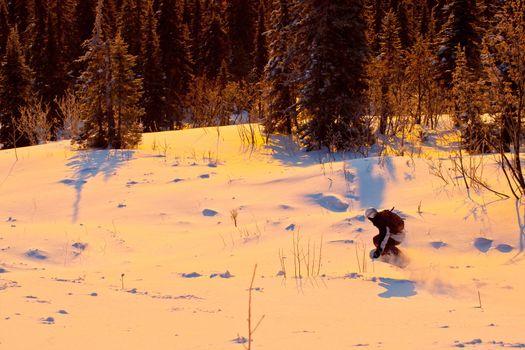 Snowboard freeride in Siberia