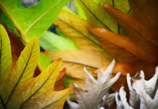 Beautiful colors of leaves in early autumn