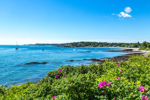 Simonton Cove Portland Maine