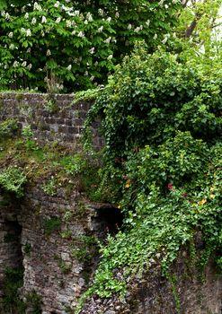 Obsolete Stone Wall