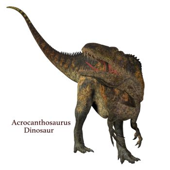 Acrocanthosaurus was a carnivorous theropod dinosaur that lived in North America in the Cretaceous Period.